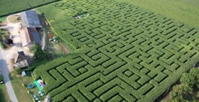 Le Labyrinthe de L