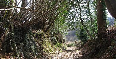 Wanderrouten nach Brive